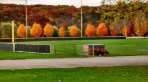Baseball diamond during fall. Photo by Mike Glass.
